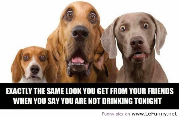 funny-quotes-about-drinking-alcohol-8